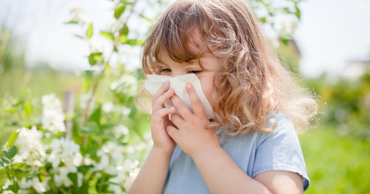 Luftrenare är inte bara en god investering för personer som har problem med allergier eller astma utan av alla människor som vill andas in frisk luft och förebygga framtida hälsoproblem. #allergi #astma #pollen #luft #air #luftrenare #hälsosamt #healthy #hälsoproblem #frisk https://t.co/Wc3Qd7cNTF