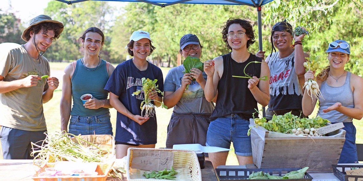 test Twitter Media - Harvesting has begun on Long Lane Farm, the two-acre student-run farm in Middletown!  They're anticipating crops such as tomatoes, carrots, broccoli, peppers, and potatoes to be harvested, as well as others. Keep up the great work, Cards! https://t.co/I5MXmR9ouE https://t.co/yShoMHGwVk
