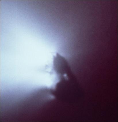 Nucelus of Halley's Comet