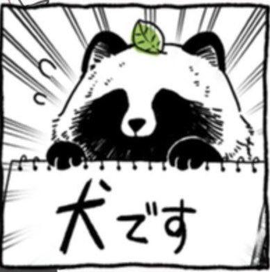 【動物の習性】意外?? タヌキの夫婦愛が尊い!是非真似したい!
