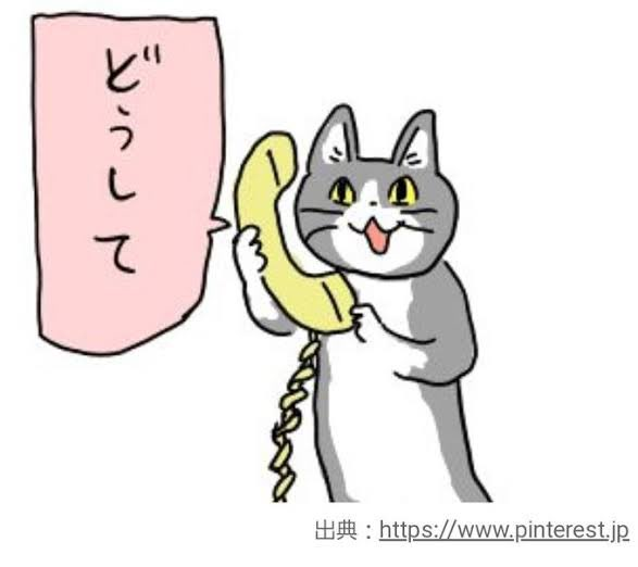 「やーめーれー」巨大猫さん出現・かわいいほっこり画像!!