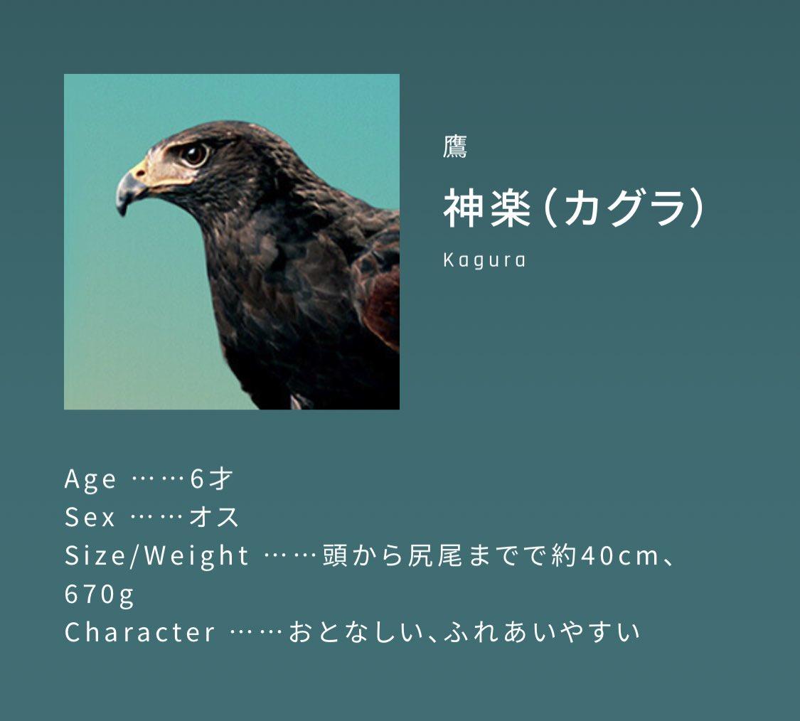 イメージキャラクターが西川貴教さんだと納得して購入してしまう!?一瞬で乾くドライヤーの広告に注目!