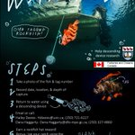 Are you fishing for rockfish?! We need your help! If you capture one of our tagged fish, we'd love to hear about it - please follow the steps in the poster to collect your (rockfish hat) prize.   @Go_Fish_BC @anglersatlas @sportfishingbc @FNFish