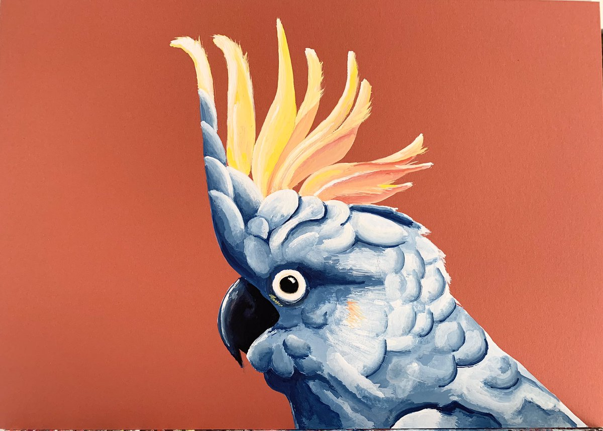 My mouth painting - Yellow. Pink. Blue Cockatoo.  I'm only able to paint using my mouth. https://t.co/WpAavpMaCW