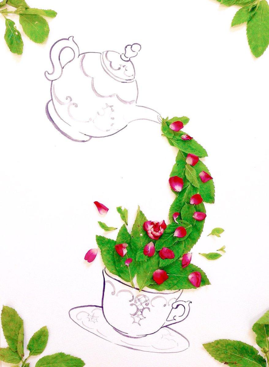 きょう7月22日は 大暑 海の日 円周率近似値の日 下駄の日 ナッツの日 ディスコの日 著作権制度の日 ONE PIECEの日  誕生花はミント 花言葉「美徳」