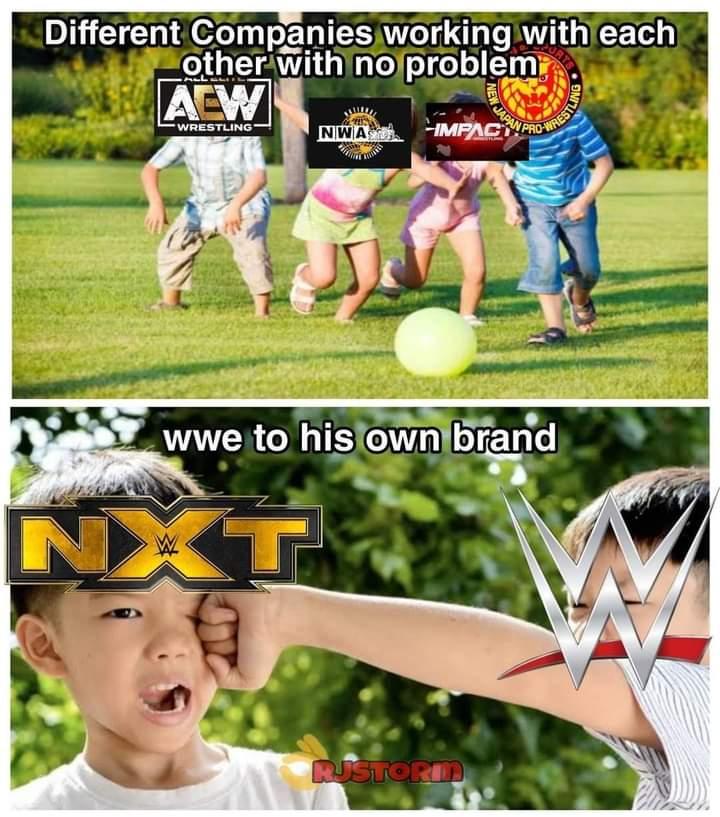 RT @EighteenAug: Poor developmental brand #NXT #WWERaw #AEWDynamite https://t.co/rdBMDdou66