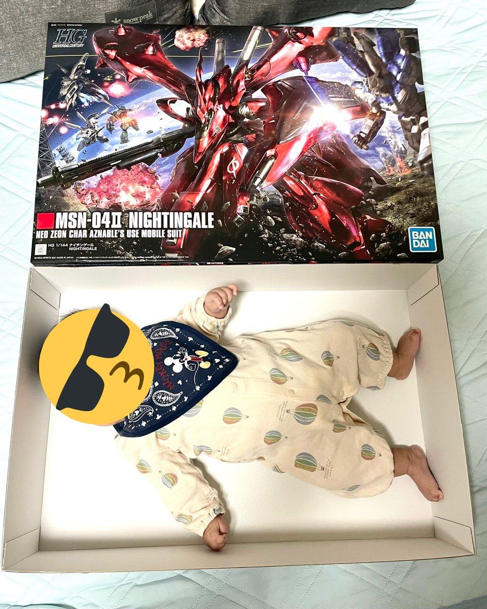 HGナイチンゲールの箱がどれくらいデカいかというと、生後2ヶ月半の子がすっぽり収まるくらいにはデカいです。