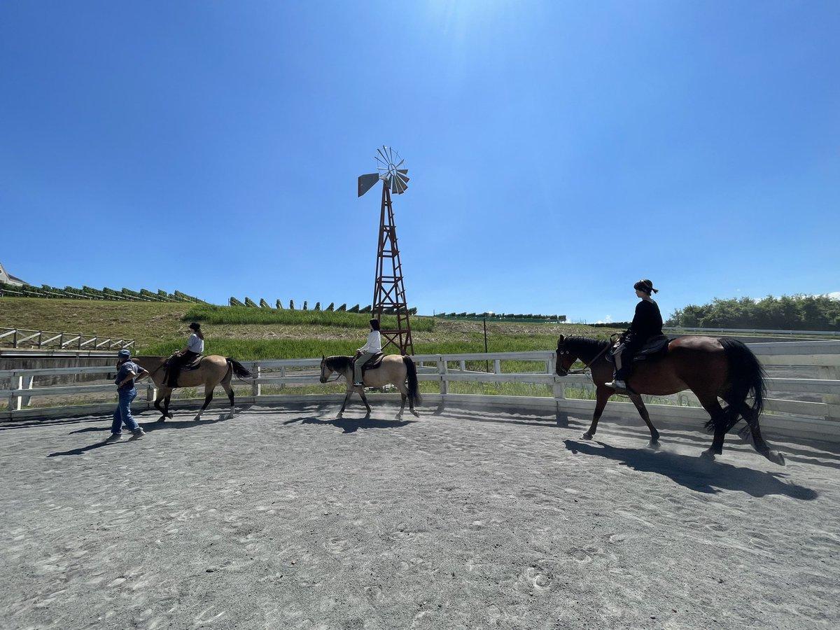 test ツイッターメディア - ウマ娘にはまってから馬への興味と愛が溢れていたわたくし。  本物のお馬さんに乗ってきました🐴💓 帰り道はずっと「また会いに行きたい。すぐに。」と、みんな相棒への愛が止まりませんでした。  私の相棒ライトです。 https://t.co/ddA1jKx2iX
