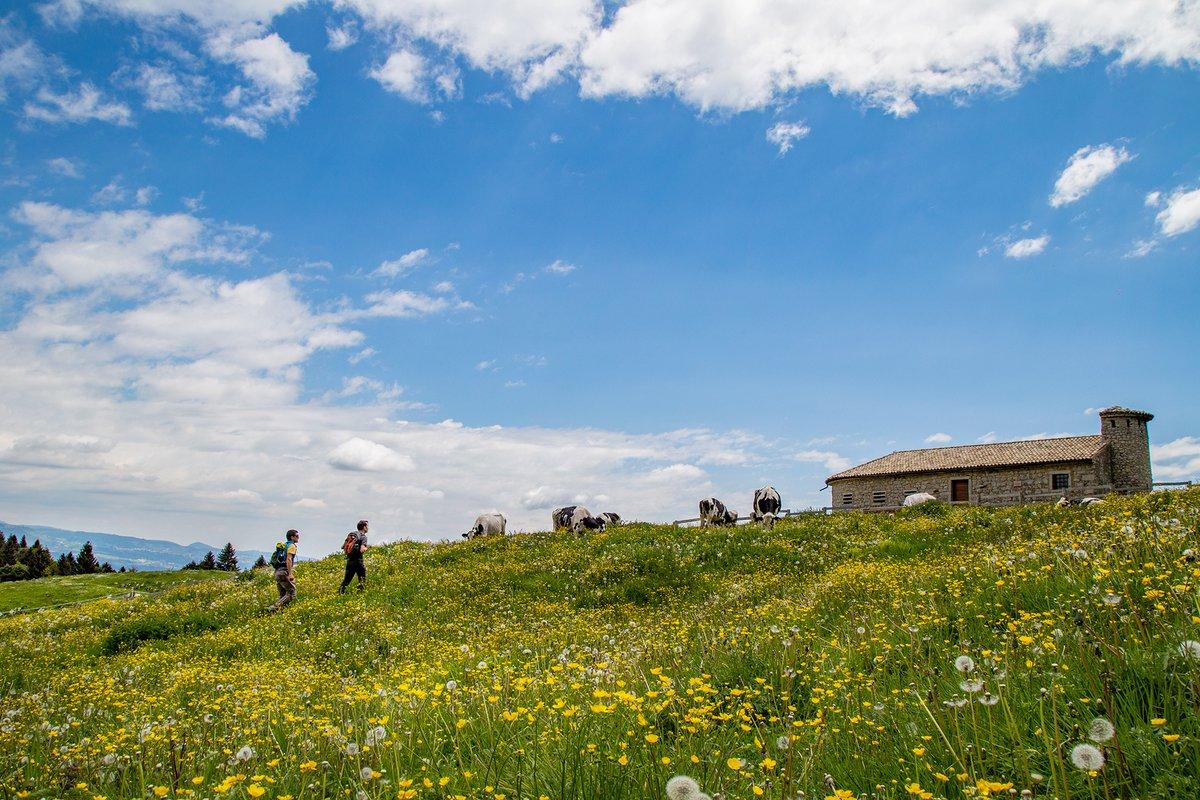 La Via delle PREALPI  A cavallo, a piedi o in mtb:...