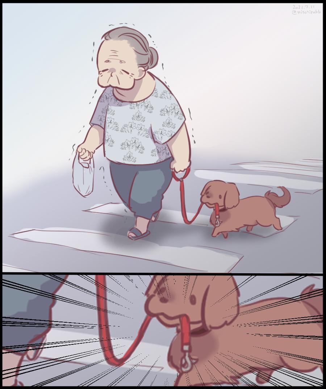 この間 すごい犬いた https://t.co/nbwwPbTN8Z