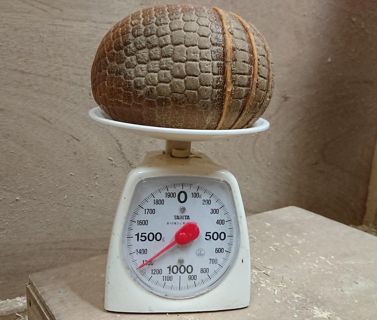 今日は休園日です。  写真は今朝撮ったマタコミツオビアルマジロの体重測定。夜行性のマタコたちが寝ぼけてる隙にサッと測ってサッと寝床に戻します。