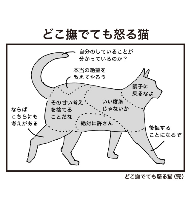 どこ撫でても怒る猫