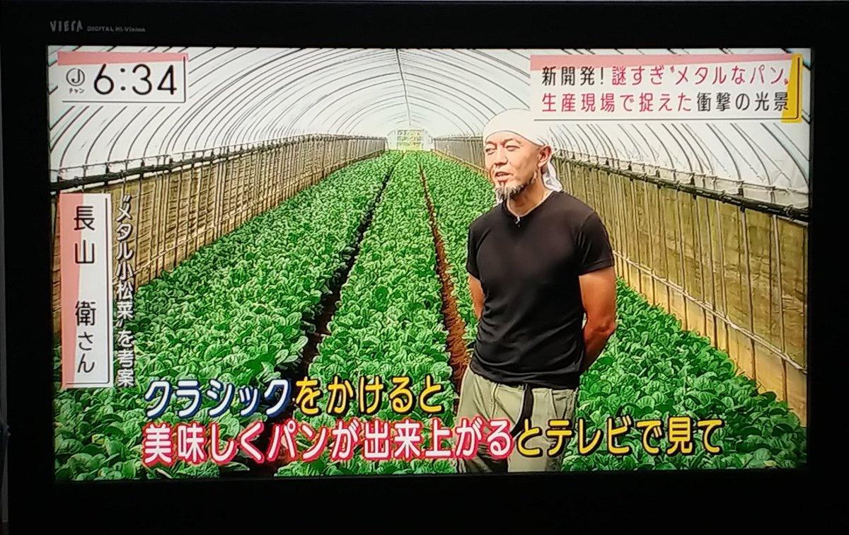 鉄分を増やすために小松菜にメタルを聞かせてみた!?メタル小松菜が話題沸騰中!