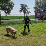 Image for the Tweet beginning: Utrudnienia na DK15 między Goliną