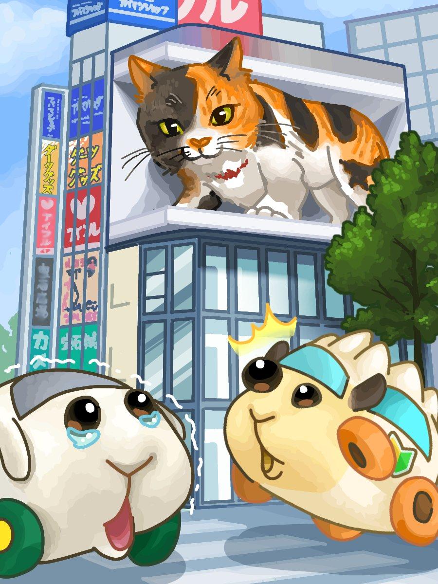 モルカーに乗って新宿猫を見に行きたい