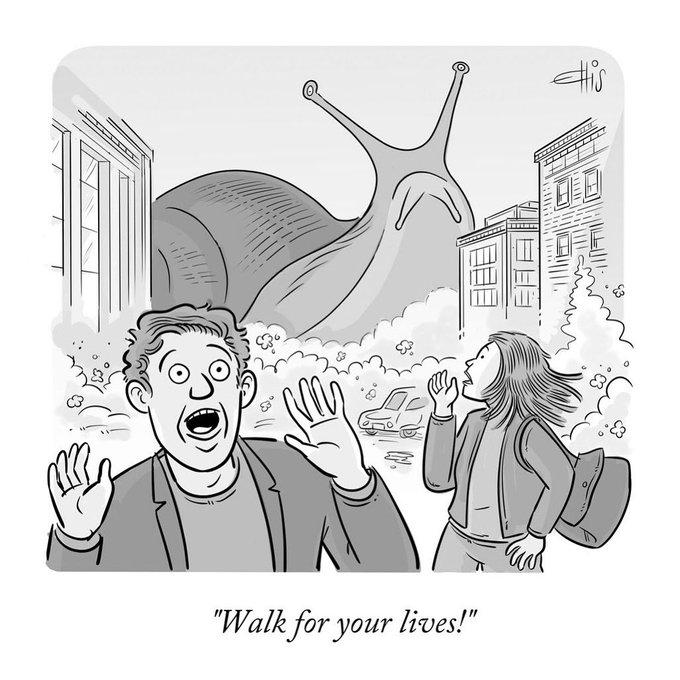 Ellis Rosen (@EllisRosen): 'Walk For Your Lives.'
