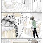 どれだけ探しても見つからなかったのに・・・!猫飼いさんはきっと共感を覚えそうな猫漫画が話題に!