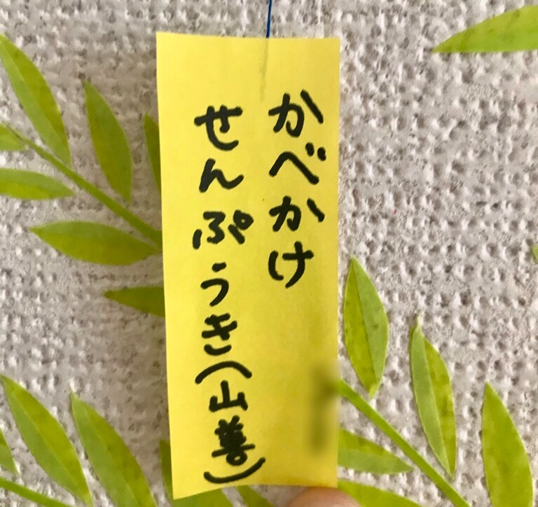 扇風機大好き坊ちゃん(4) の七夕のお願い事が、まさかこんな形で叶うなんて…。 山善さんが粋過ぎる…。 この七夕の事を、私たちは一生忘れない。