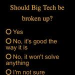 Image for the Tweet beginning: Should big tech be broken