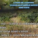 Image for the Tweet beginning: #notizie #sicilia Mafia, blitz di carabinieri