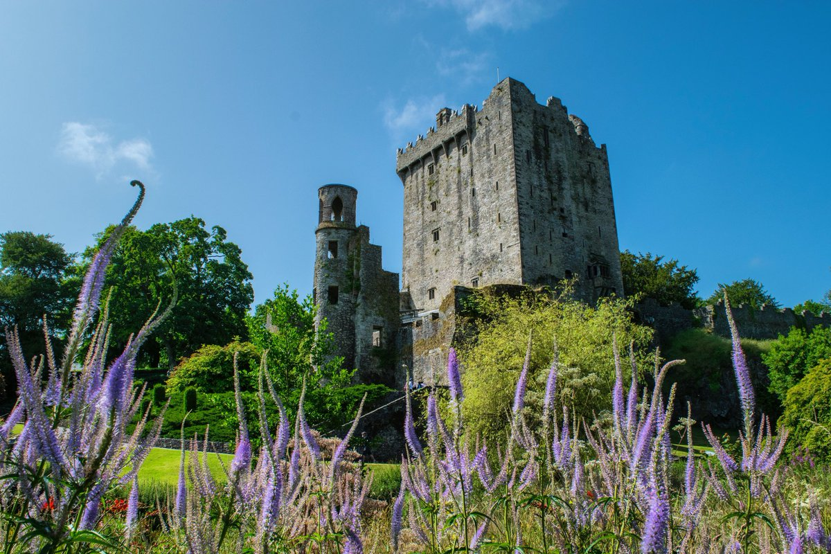 The weather today was a scorcher!!☀️☀️☀️ Fantastic day to explore the Castle & Gardens!   #blarneycastleandgardens #purecorkwelcomes #purecork #makeabreakforit #cork #ireland #blarney #castles #walks #like #follow #pictureoftheday #picoftheday #photography https://t.co/t8HwfnNCNy