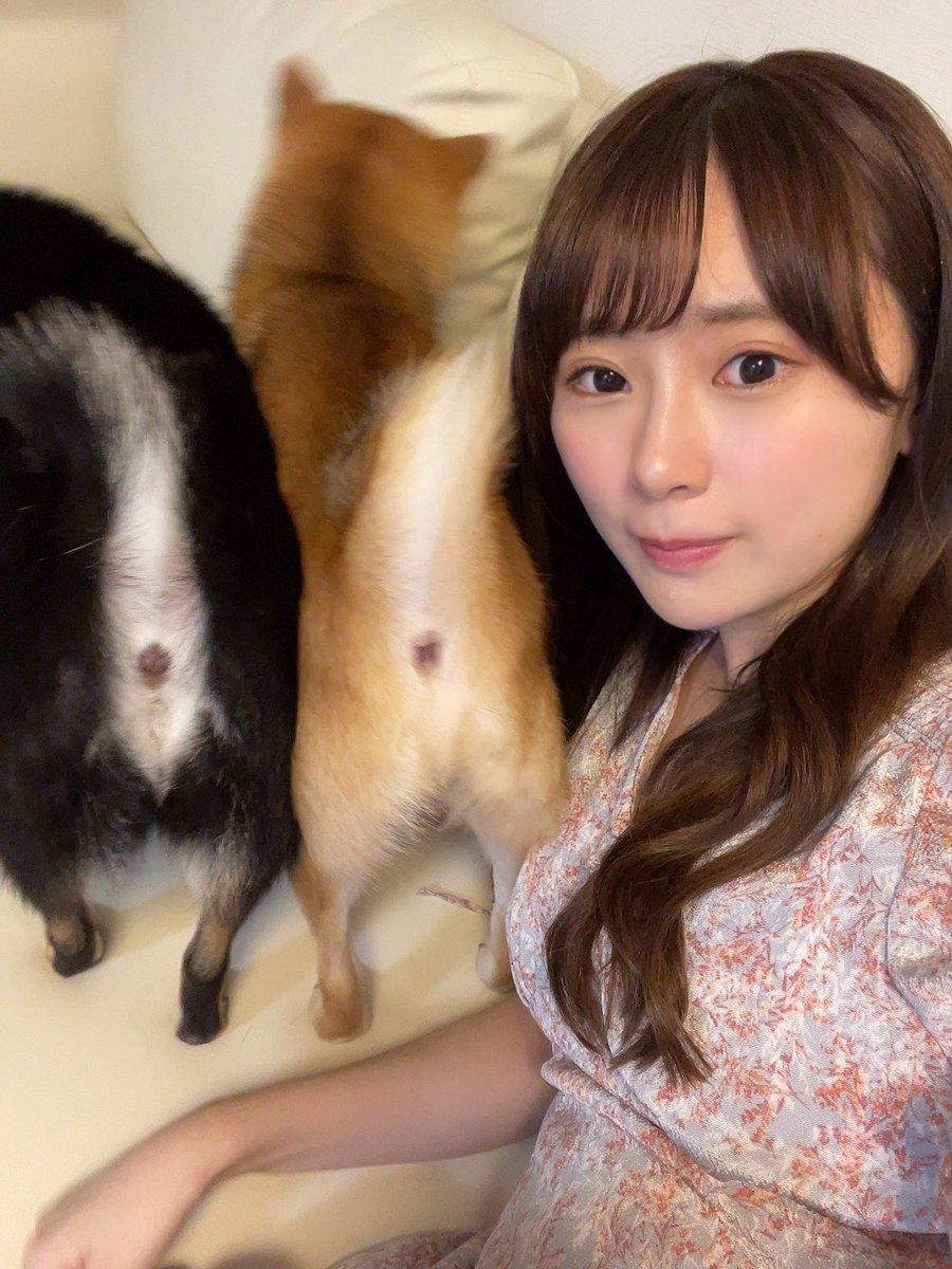 長沢菜々香〈なーこ。〉Twitter投稿サムネイル画像
