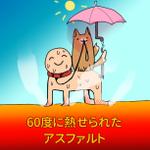真夏の犬の散歩に注意!炎天下の時間帯は必ず避けて!