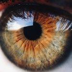 Image for the Tweet beginning: ⚫️ ¿Cuidas tu salud ocular?👁️ ⚫️Si