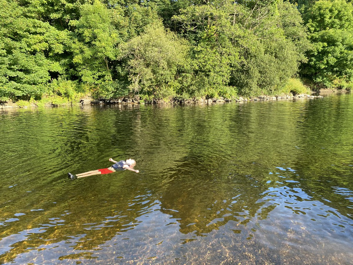 7 yr old basking in Lee River in the last rays of sunshine #ireland #HeatWave2021 #purecork https://t.co/lTjJkcNtH8