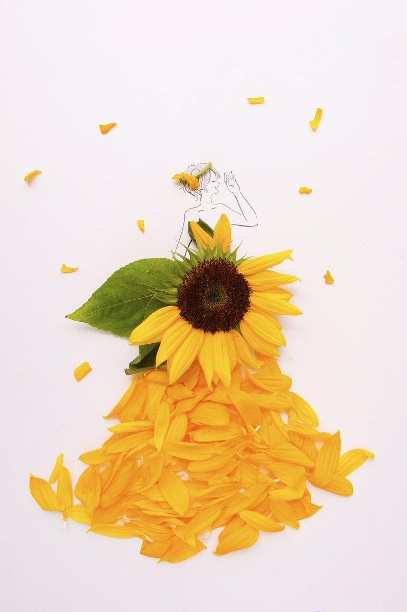 きょう7月20日 月面着陸の日 ハンバーガーの日 Tシャツの日 夏割りの日 ビリヤードの日  誕生花はヒマワリ 花言葉 「あなたは素晴らしい」 「あなただけを見つめる」 「情熱」「崇拝」「あこがれ」