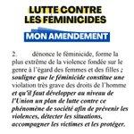 Image for the Tweet beginning: La lutte c/ les #féminicides:
