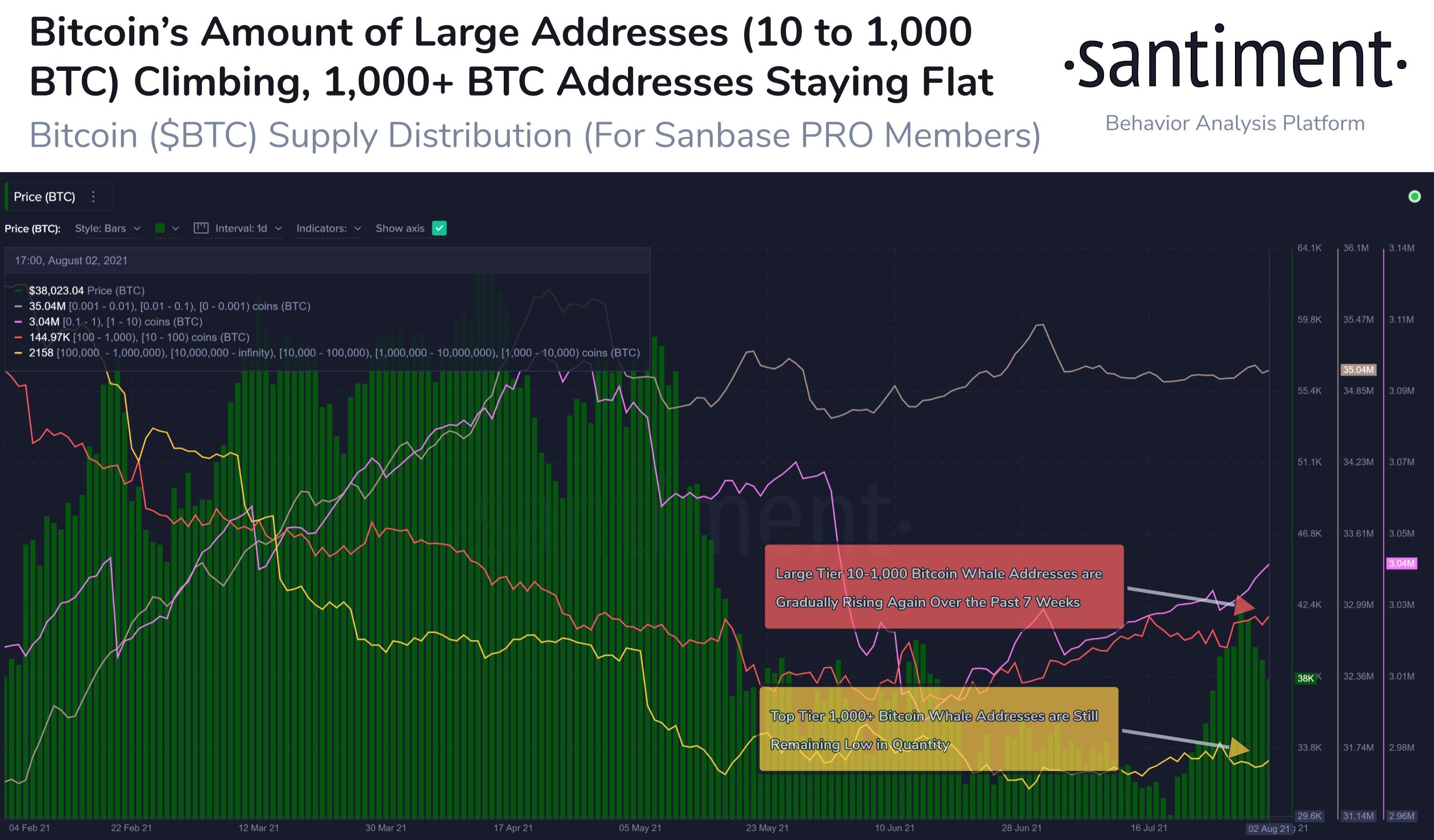 Přerozdělování nabídky BTC, počet mincí v rukou velryb se zvyšuje