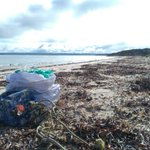 Have you noticed rubbish on a local beach? Unfortunately, it's not uncommon for marine debris to wash up on our beaches. We support the Tangoroa Blue, Australian Marine Debris Initiative which encourages the community to get involved in beach clean-ups ➡https://t.co/IKZG8FecBc
