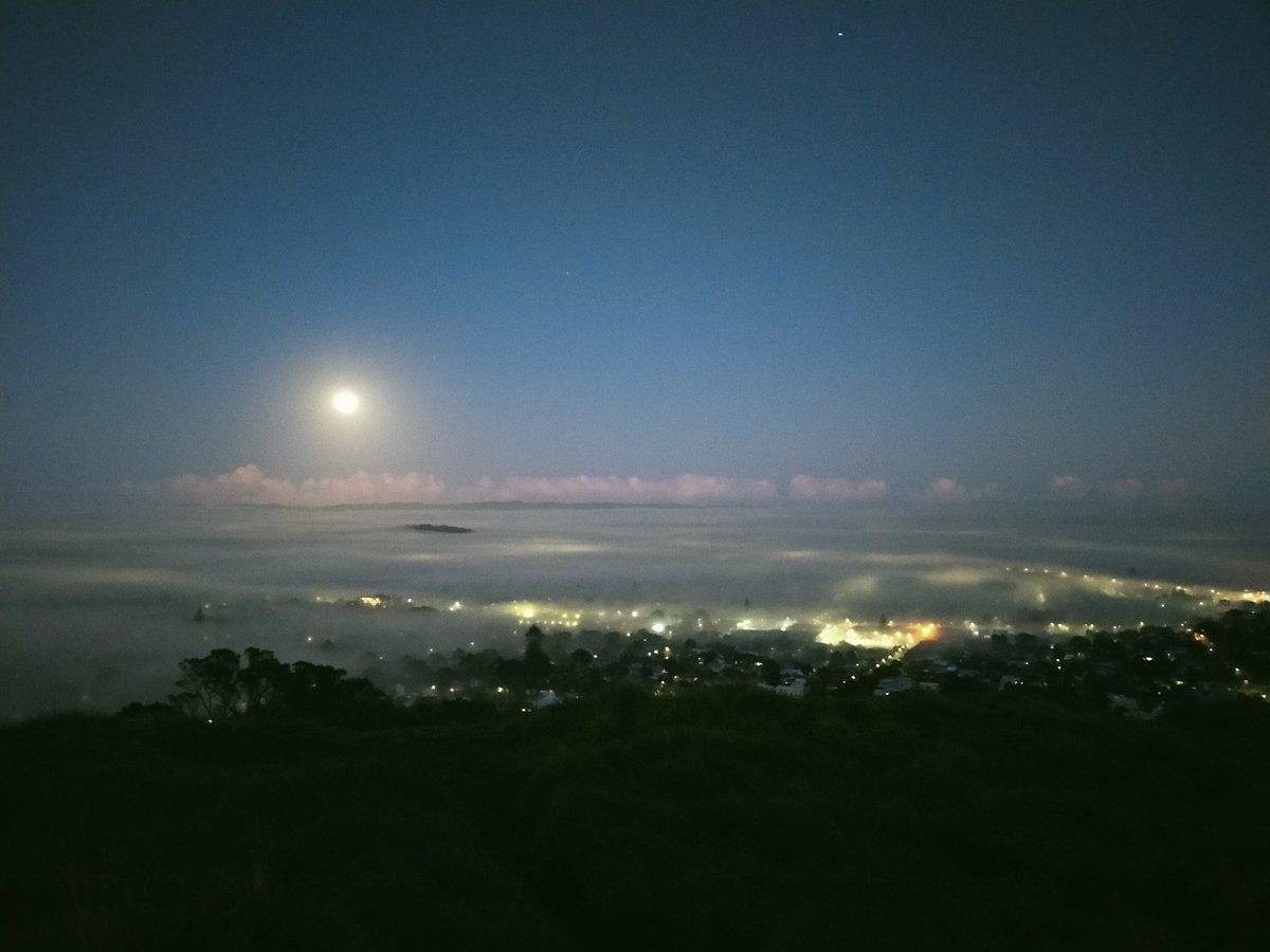 Foggy suburb under a moonlight 👍 with fog forecast 😊