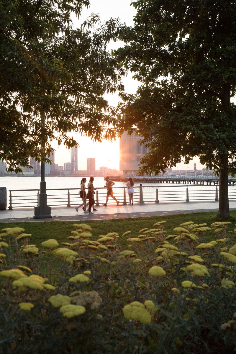 Golden hour offers up a time of beauty and relaxation in the Park. Whether you're soaking up these moments reconnecting with a loved one or having a quiet moment to yourself, #HRPK's open space allows us to take a much-needed breath of fresh air. How do you unwind in the Park? https://t.co/T62t8mkTeA