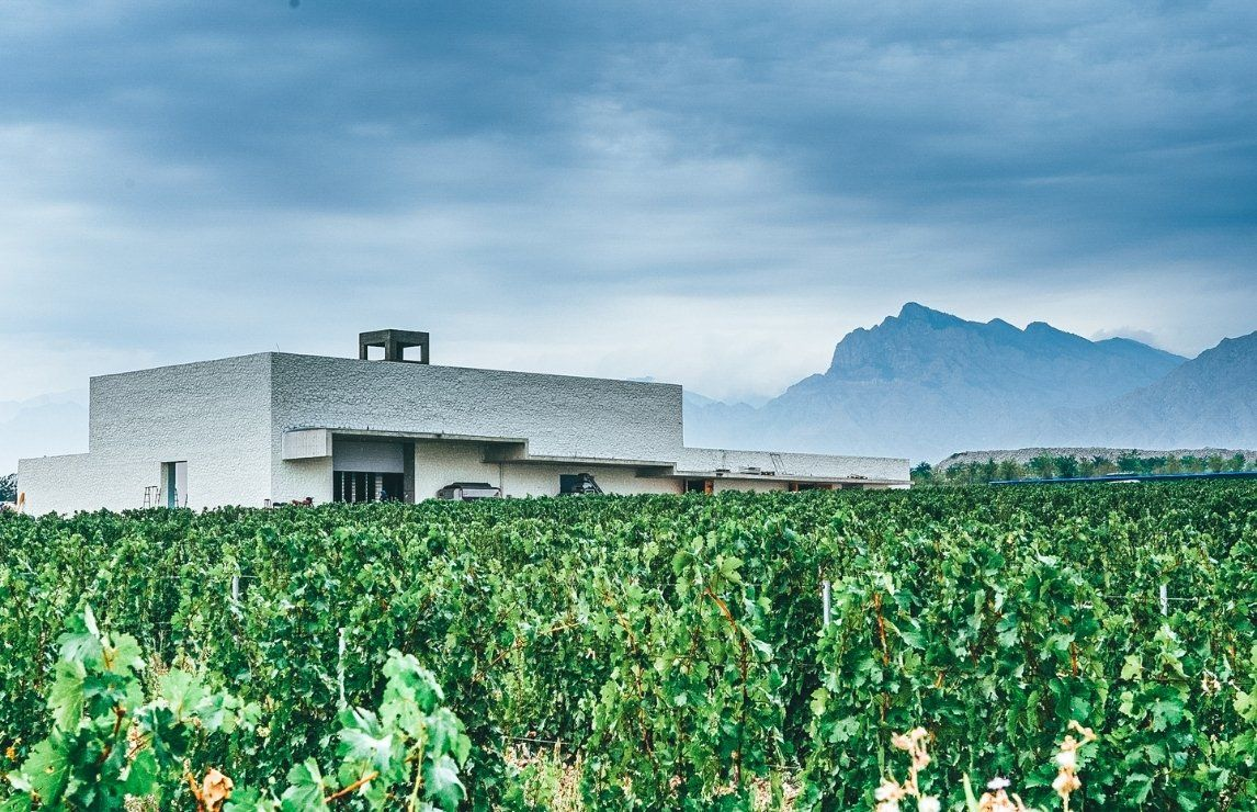 IWSC Market Insight: the #Chinese #wine market https://t.co/nDOgku7AEn via @theIWSC #China #biz https://t.co/ucHgUkE7e9
