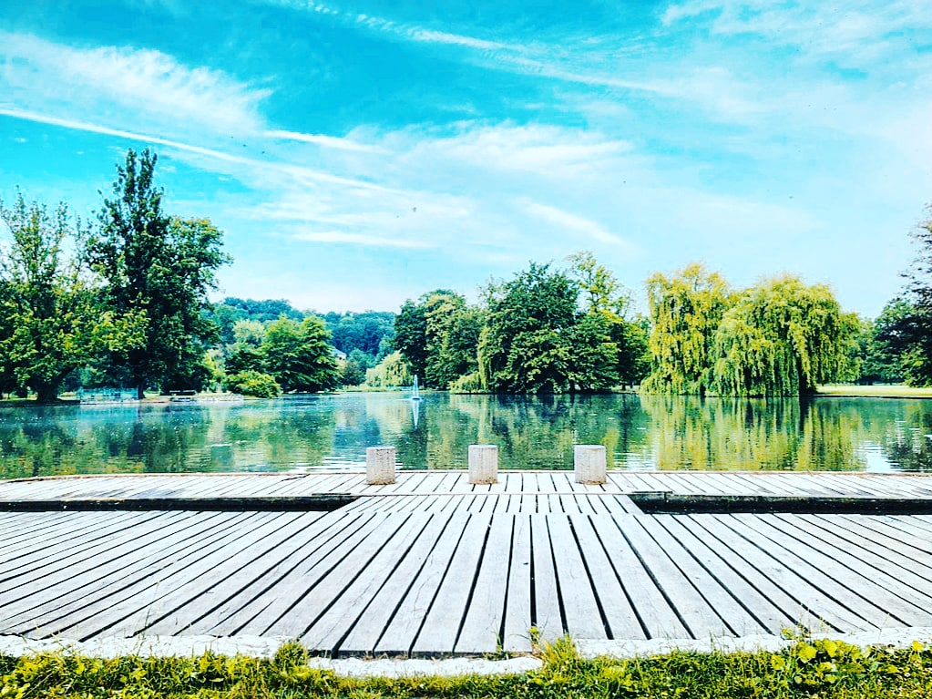 Chanez's morning run view 🏃♀️🏞️  #stromovka #park #nature #view #run #runnerslife #runningterritory #running #runningtime #morning #apollodivision🚀 https://t.co/YXqd7dy4A9