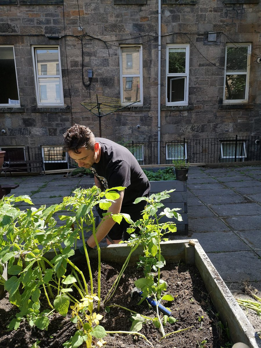 Image for Gardening Group at QMD