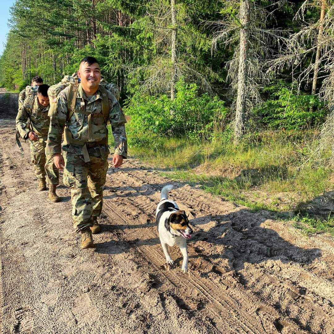 #Ruck #Chico  Chico the dog increases physical #readiness at BPTA, Poland.  #Chicothedog #StrongerTogether #NATO #Chico #WeAreNATO https://t.co/zgOUmQqZqL