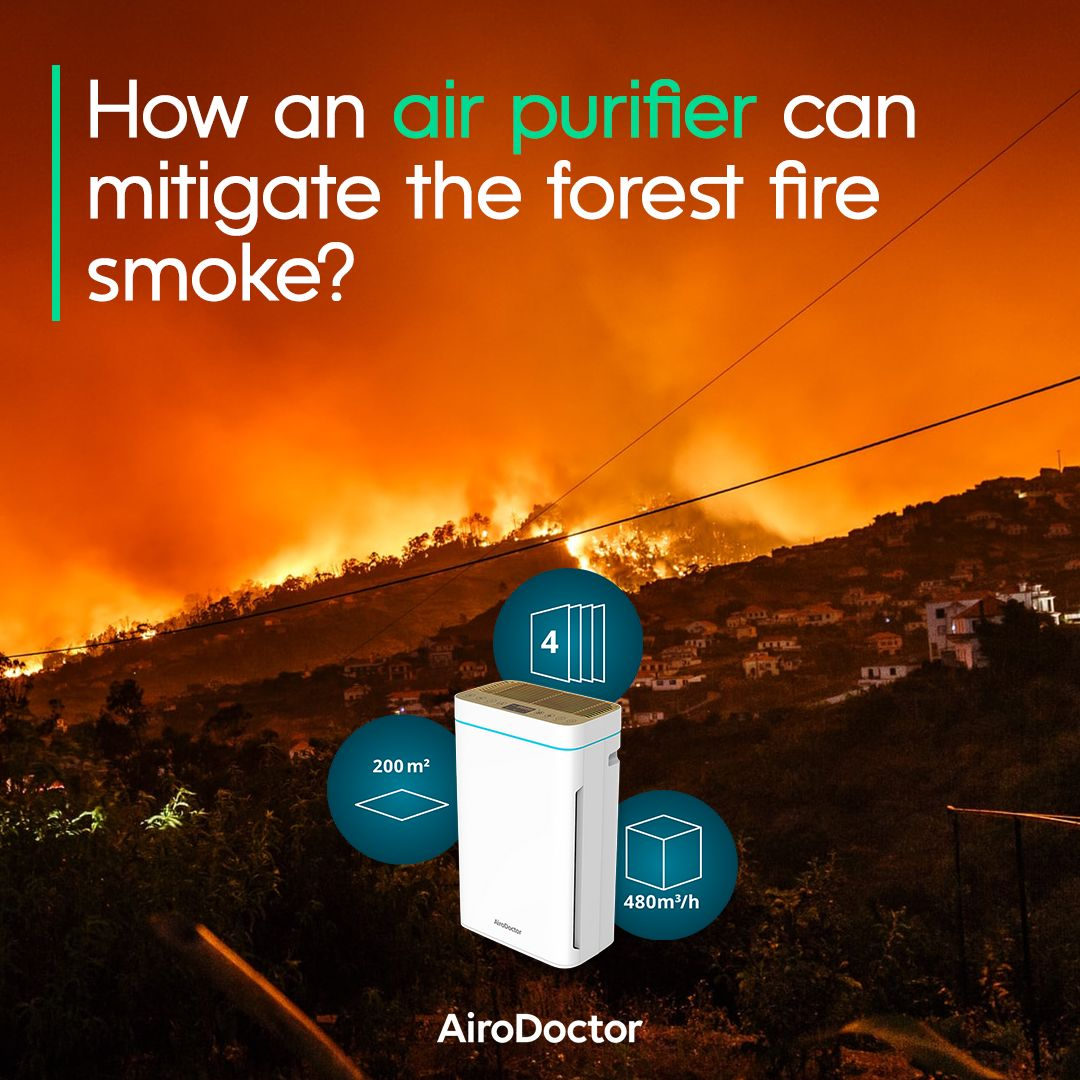Many cities around the world are suffering from forest fires caused by high temperatures. In this sense, experts emphasize the importance of air purifiers to filter particles of contaminated air in homes and offices.   Learn more: https://t.co/74A30yra5F https://t.co/I1zmiYyhkZ