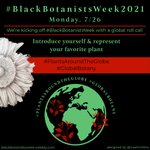 Welcome to #BlackBotanistsWeek2021! Let's start off with a 💥BANG💥. It's a #GlobalBotany roll call. 👀Introduce yourself and rep your favorite plant! #PlantsAroundTheGlobe 🌱💚🌿 We want to meet you!