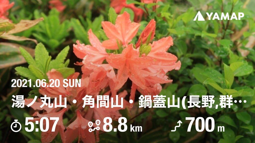 1132_suki_555 photo