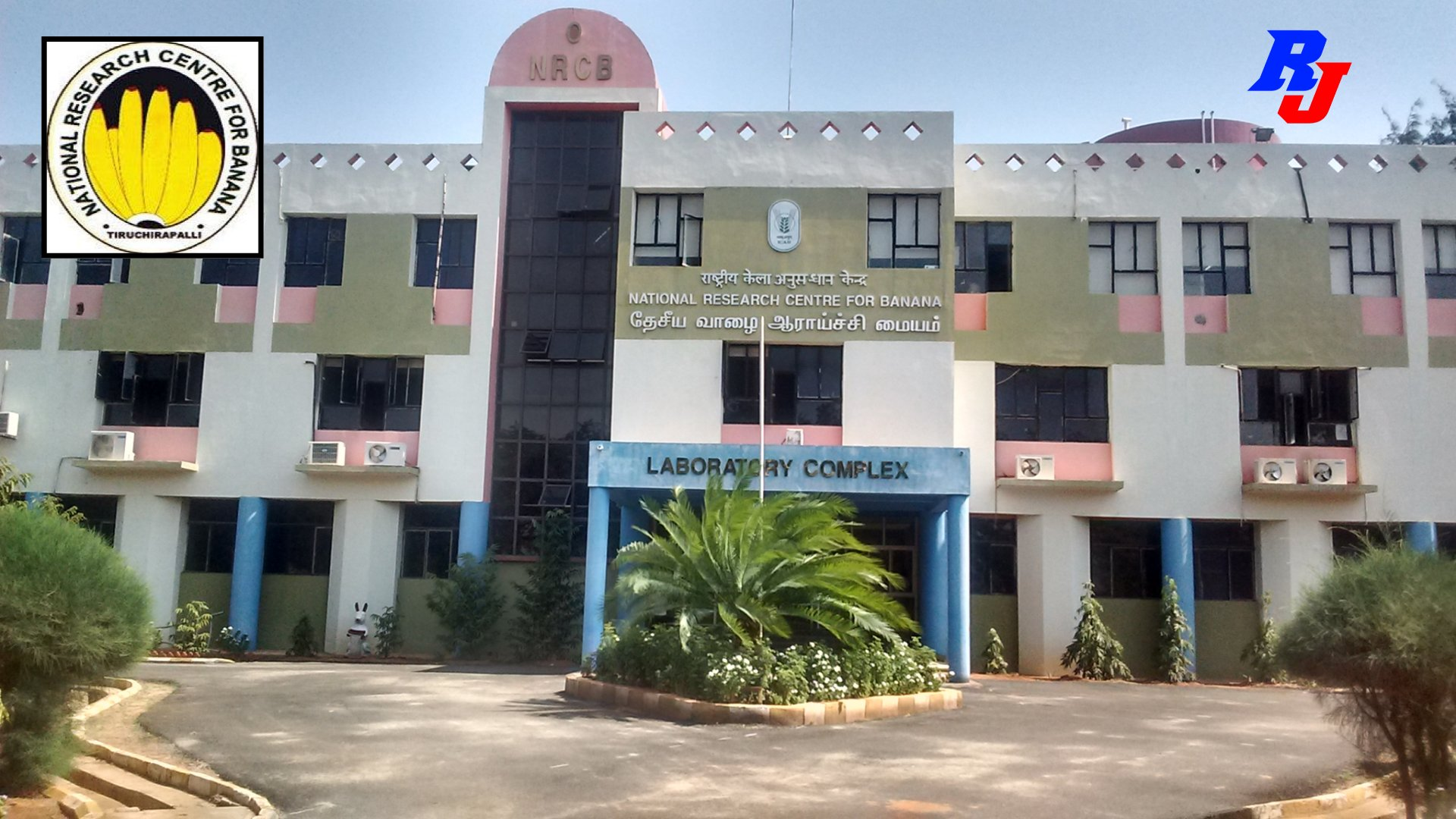 Project Scientist (on contractual basis) Position at ICAR – NRC, Tiruchirapalli, India