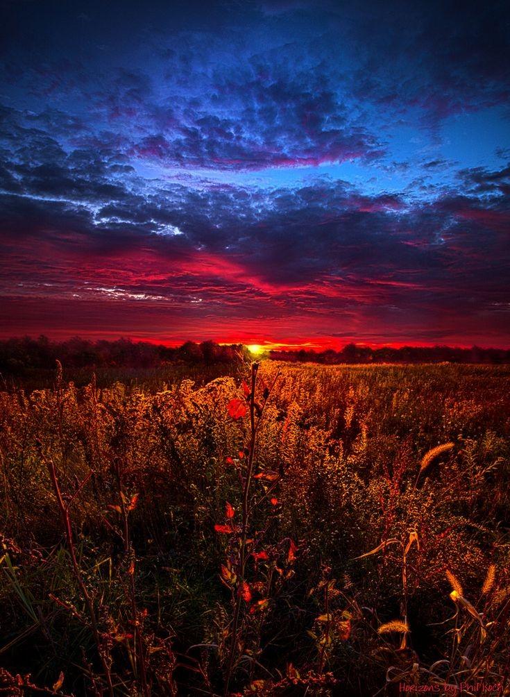 #naturephotography https://t.co/PsF993T6BK