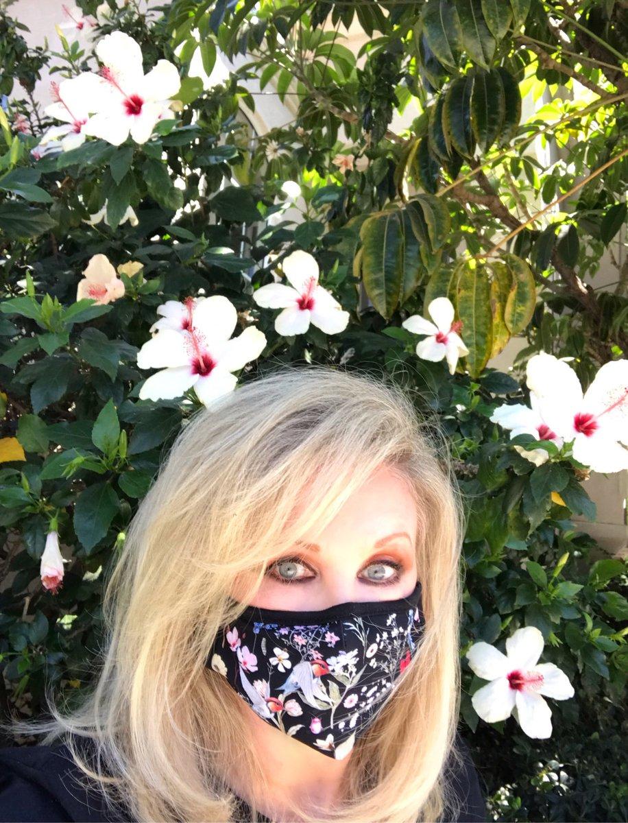 @morgfair's photo on #sundayvibes