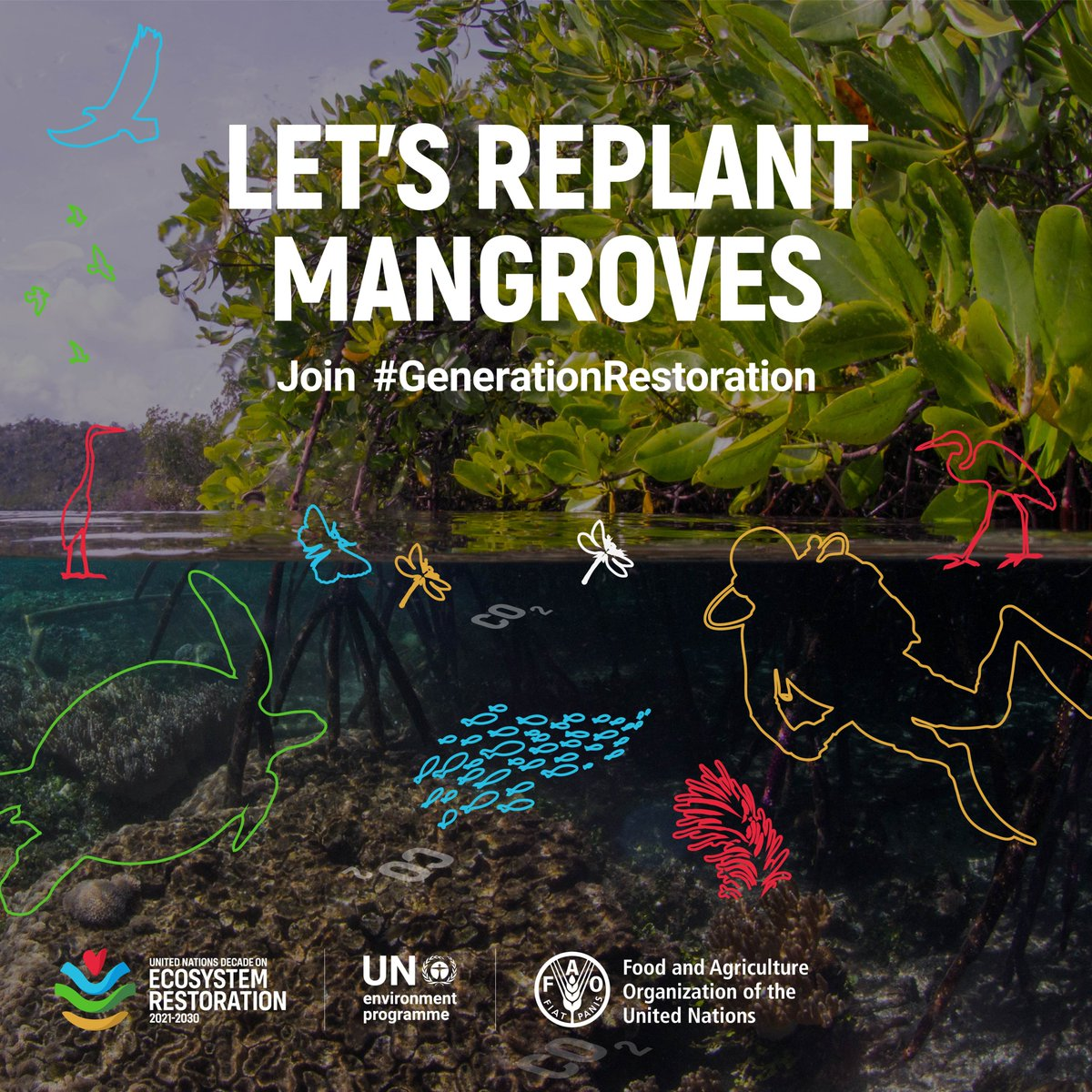 ✅Restoring mangroves, the 'Guardians of the Coast', can make ecosystems & communities more resilient to environmental changes.  What is your government doing to restore mangroves – in your county or abroad? #ActNow for #GenerationRestoration: https://t.co/83FsFRFqsT #MangroveDay