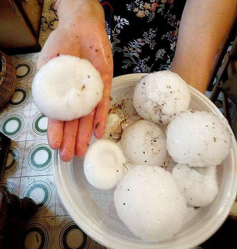 De violents #orages accompagnés de grêlons de près de 10cm de diamètre ont touché la #Lombardie en Italie, ce dimanche ! Photo réalisée à #Brescia par Simone Zanardini sur Facebook. #hailstorm #Italia