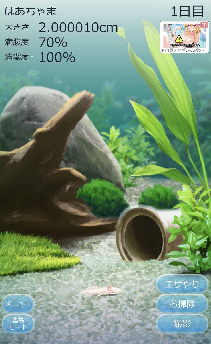 [Vtub] 最終極的蠑螈養殖就是我自己成為蠑螈