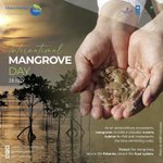 Image for the Tweet beginning: The #InternationalMangroveDay is celebrated every