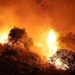 Image for the Tweet beginning: #Palermo Incendi in tutta la